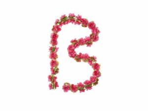 Basil Flower garland fuchsia