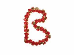 Basil Flower garland red